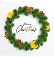 xmas wreath garland spices orange and fir vector image vector image