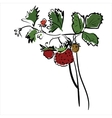 Cartoon red strawberry vector image