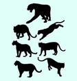 leopards and panthers silhouettes vector image vector image