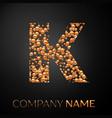 letter k logo gold dots alphabet logotype vector image