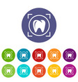 one tooth icon simple style vector image vector image