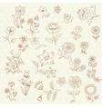 set hand drawn flowers vector image