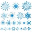 various snowflakes vector image vector image