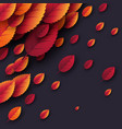 3d realistic autumn fall leaves autumnal vector image