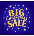 Big christmas sale with stars vector image vector image