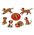 flat dog animal set vector image vector image