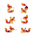 foxes poses vector image