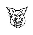 head pink pig wearing earring smiling front vector image vector image