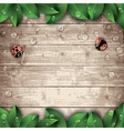 Ladybugs and leaves on wooden texture background vector image vector image