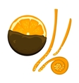Orange isolated vector image