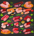 set different kinds sausage and spices vector image vector image