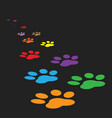 colorful paw print icon isolated on black vector image