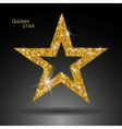 Golden star banner Gold glitter star Gold vector image