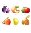 Cartoon fruits icons set vector image