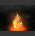 bonfire and smoke realistic campfire with fire vector image vector image