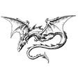 Dragon Akos 1 vector image vector image