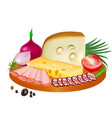 pieces cheese and slices smoked sausage and vector image vector image