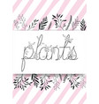 plants word with handmade font and floral vector image