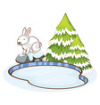 scene with white rabbit in snow vector image