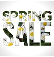 Spring Sale typography composition vector image vector image