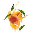 vn peach with juice vector image vector image
