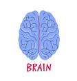 human brain medicine in cartoon style vector image