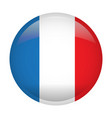 isolated flag of france vector image vector image