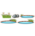 isolated set pond vector image