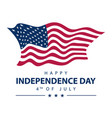 usa independence day banner with american flag vector image
