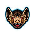 vampire bat head mascot vector image vector image