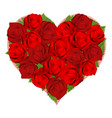 beautiful red roses in heart shape vector image