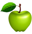 Green apple with leaf and stem vector image vector image