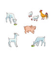 set of farm animals - chicken pig goat and lamb vector image