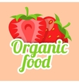 Strawberry simple background vector image