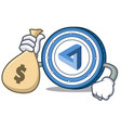 with money bag maidsafecoin character cartoon vector image vector image
