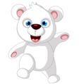 Baby polar Bear posing vector image vector image
