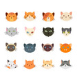 collection cute cat head with many face vector image vector image