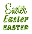 Easter Lettering Template with grass and flowers vector image