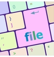 file button on computer pc keyboard key vector image vector image