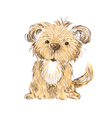 dog isolated vector image vector image