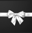 elegance white satin bow with ribbon isolated on vector image