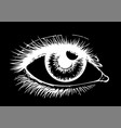eye on black background eyes art woman eye the vector image vector image