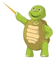 Funny Turtle Showing vector image vector image