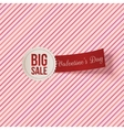 Valentines Day Big Sale Label and red Ribbon vector image vector image