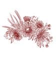 floristic composition bouquet wildflowers vector image vector image