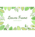 leaves frame foliage decorative elegant card or vector image