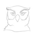 owl stands drawing lines vector image vector image
