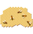 bees producing honey vector image vector image