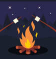 bonfire and marshmallow on night background vector image