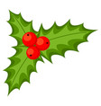 colorful cartoon holly berries vector image